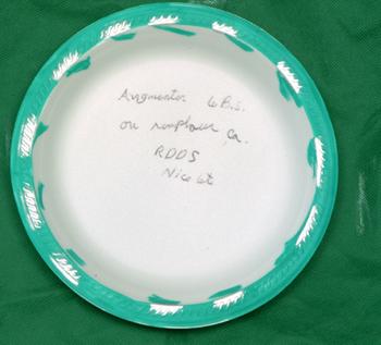 Assiette 6